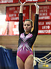NYSPHSAA Gymnastics 2019