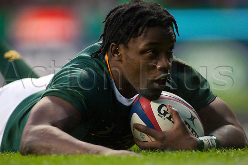 TWICKENHAM LONDON, 27-11-2010. South Africa's Lwazi Mvovo,  scores a try  during the Investec International match between England and South Africa at Twickenham Stadium Middlesex England.