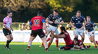 Jason Harries of London Scottish battles forward during the Greene King IPA Championship match between London Scottish Football Club and Jersey at Richmond Athletic Ground, Richmond, United Kingdom on 7 November 2015. Photo by Andy Rowland.