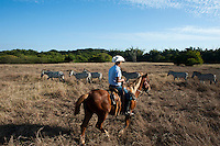 Horse back riding with Zebras, Cuixmala, Costa Alegre, Jalisco. Eco Chic Hotels, Mexico