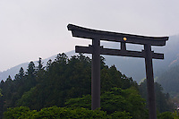 The massive torii gate at Hongu Shrine rises above the trees.