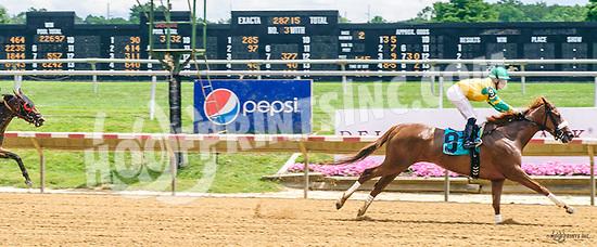 Sunshineinmypocket winning at Delaware Park on 7/1/17