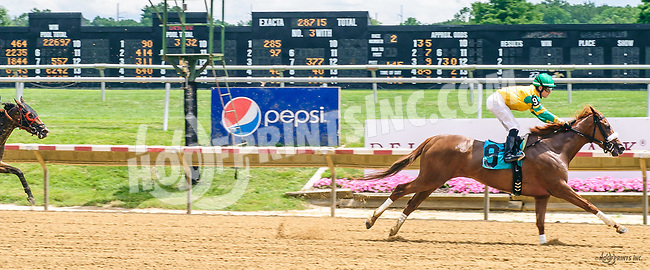 Sunshineinmypocket winning at Delaware Park on 7/1/17
