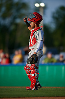Auburn Doubledays catcher Wilmer Perez (20) during a NY-Penn League game against the Batavia Muckdogs on June 14, 2019 at Dwyer Stadium in Batavia, New York.  Batavia defeated 2-0.  (Mike Janes/Four Seam Images)