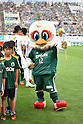 2015 J1 2nd Stage : Matsumoto Yamaga F.C. 2-0 Kashima Antlers
