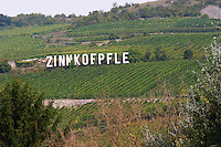 vineyard zinnkoepfle grand cru westhalten alsace france