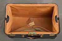 Willard Suitcases  /  Lillian L