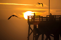 Birds and fisherman, Sunrise over the Main Street Pier, Daytona Beach, FL, February 2018. (Photo by Brian Cleary/www.bcpix.com)