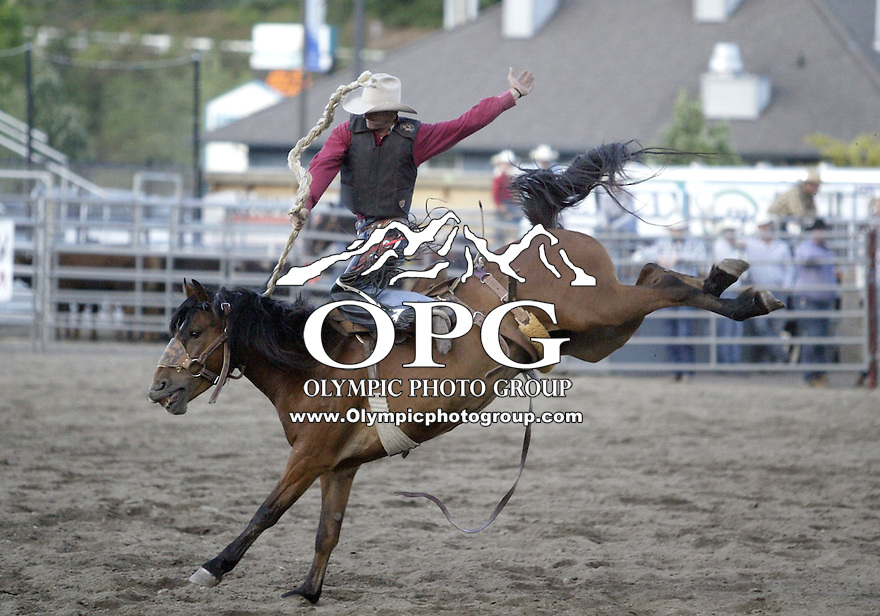 23 June 2007:  Mathew Gore hangs on while competing in the Saddle Bronc riding compition at the Kitsap County Thunderbird Benefit Pro Rodeo in Bremerton, Washington.