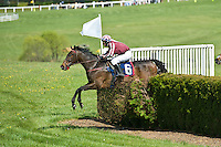 21 April 2012:  Swimming River and Jeff Murphy win the Alfred M. Hunt Steeplechase at Middleburg Spring Races at Glenwood Park in Middleburg, Va. Swimming River is owned by Indian Run Farm and trained by Eva Smithwick.  Susan M. Carter/Eclipse Sportswire