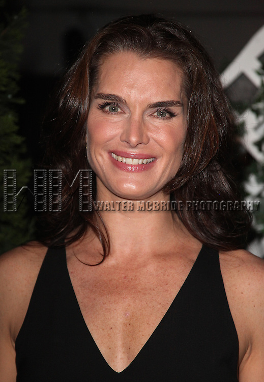 Brooke Shields.attending the After Performance Reception for Brooke Shields debut in 'The Addams Family' at the Empire Hotel Roof in New York City.