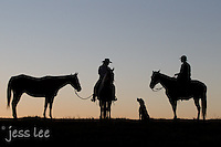Sunrise cowboy, cowgirl,dog going for a ride Cowboys working and playing. Cowboy Cowboy Photo Cowboy, Cowboy and Cowgirl photographs of western ranches working with horses and cattle by western cowboy photographer Jess Lee. Photographing ranches big and small in Wyoming,Montana,Idaho,Oregon,Colorado,Nevada,Arizona,Utah,New Mexico.