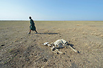 A man walks by a dead cow in Dong Boma, a Dinka village in South Sudan's Jonglei State, on April 12, 2017. Most villagers recently returned home after being displaced by rebel soldiers in December, 2013, and they face serious challenges in rebuilding their village while simultaneously coping with a drought which has devastated their herds.<br /> <br /> The Lutheran World Federation, a member of the ACT Alliance, is helping villagers restart their lives with support for housing, livelihood, and food security.