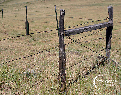 A barbed wire fence constructed of cedar posts on the eastern plains of Colorado.