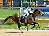 Birdway winning at Delaware Park on 5/24/12
