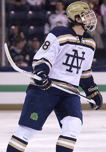 January 25, 2013:  Notre Dame defenseman Stephen Johns (28) during NCAA Hockey game action between the Notre Dame Fighting Irish and the Ferris State Bulldogs at Compton Family Ice Arena in South Bend, Indiana.  Ferris State defeated Notre Dame 3-1.