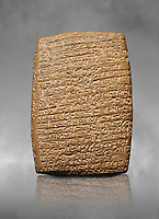 Hittite cuneiform tablet. Adana Archaeology Museum, Turkey. Against a grey art background