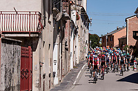 peloton rolling through town<br /> <br /> 101st Milano-Torino 2020 (UCI 1.Pro)<br /> 1 day race from Mesero to Stupinigi (198km)