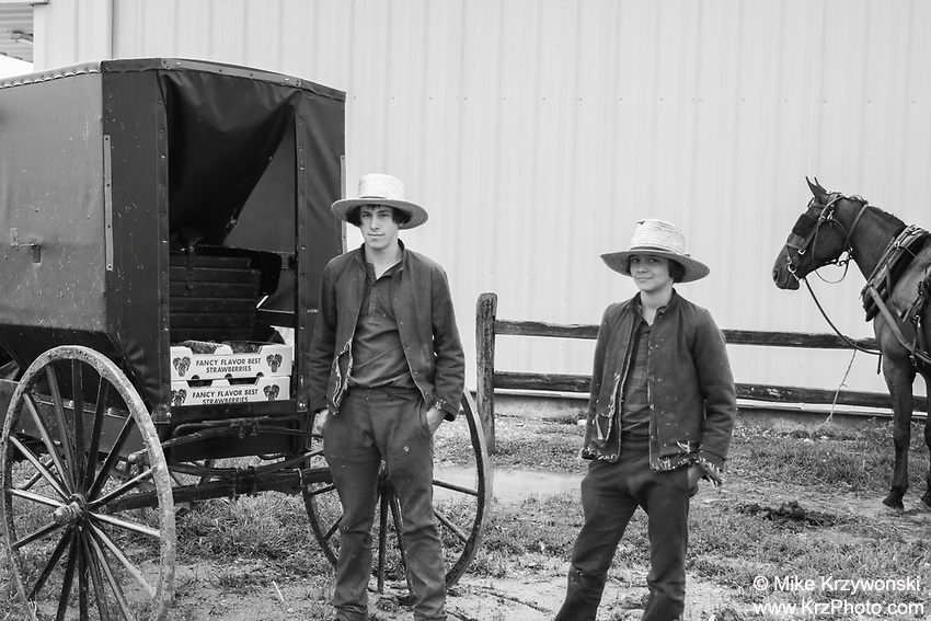 Amish Boys in Missouri Selling Strawberries