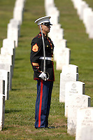 US Marines conduct burial services for a member of their unit.  No model-releases available.