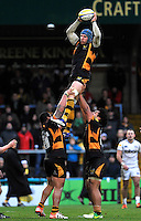 High Wycombe, England. James Haskell of London Wasps wins the line out during the Aviva Premiership match between London Wasps and Sale Sharks at Adams Park on December 23. 2012 in High Wycombe, England.