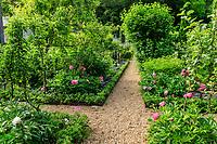 France, Indre-et-Loire (37), Amboise, château Gaillard, verger, mélange de vivaces et arbres fruitiers, ici pommiers