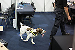 © Joel Goodman - 07973 332324 . No syndication permitted . 28/09/2013 . Manchester , UK . Police with sniffer dogs check security inside the conference venue . Preparations ahead of the Conservative Party annual conference in Manchester , today (Saturday 28th September 2013) . Photo credit : Joel Goodman