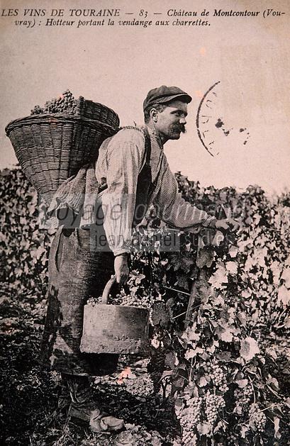 Europe/France/Centre/37/Indre-et-Loire/Vouvray: Ecomusée - Vieille carte postale - Vendangeur vers 1920 - Scène de vendange manuelle