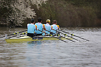 Crew: 3   MC4x   University of Edinburgh (J Temple)<br /> <br /> BUCS Head 2019 - Sunday<br /> <br /> To purchase this photo, or to see pricing information for Prints and Downloads, click the blue 'Add to Cart' button at the top-right of the page.