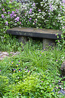 Garden bench made of stone, Galium sweet woodruff, Viola violets, Fragaria wild strawberries, naturalistic plantings with wildflowers in spring, alternate groundcovers instead of a lawn grass