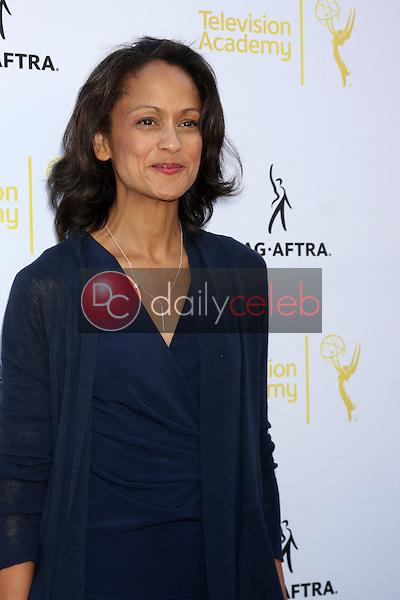 Anne-Marie Johnson<br /> at the Dynamic &amp; Diverse:  A 66th Emmy Awards Celebration of Diversity Event, Television Academy, North Hollywood, CA 11-12-14<br /> David Edwards/DailyCeleb.com 818-249-4998