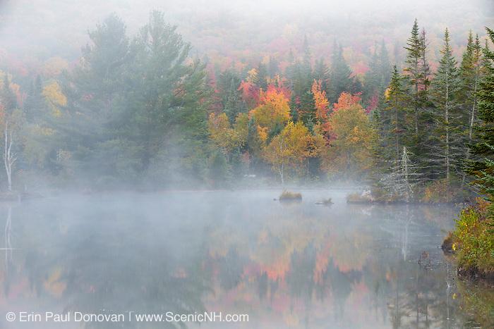 Wildlife Pond in Bethlehem, New Hampshire USA on a foggy autumn day.