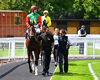Winner of The Sorvio Insurance Brokers Maiden Auction Fillies' Stakes  Elegant Erin ridden by Tom Marquand and trained by Richard Hannon is led into the Winner's enclosure during Horse Racing at Salisbury Racecourse on 15th August 2019