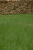 Chopped wood stacked in pile, Imst district, Austria.