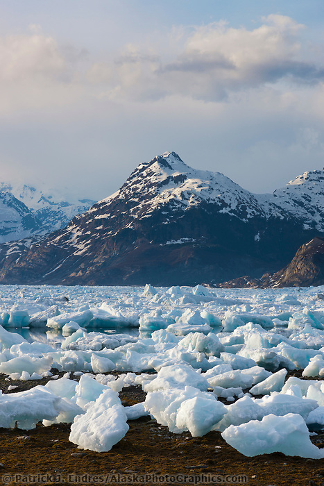 Stranded icebergs from the Columbia glacier fill Columbia bay in northern Prince William Sound, Chugach mountains in the distance.