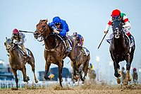 DUBAI, UNITED ARAB EMIRATES - MARCH 25: Thunder Snow #13 ridden by Christope Lemaire (blue hat), wins the UAE Derby at Meydan Racecourse during Dubai World Cup Day on March 25, 2017 in Dubai, United Arab Emirates. (Photo by Douglas DeFelice/Eclipse Sportswire/Getty Images)