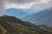 Tapichalaca Reserve cloud forest; Ecuador, Prov. Zamora-Chinchipe