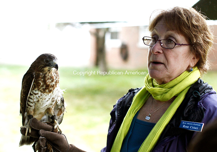 Middlebury, CT- 04 October 2014-100414CM07-  COUNTRY LIFE-- Rose Crisci of Blue Moon Raptors, talks about a rescued broad-winged hawk, during St. George's Episcopal Church annual Blessing of the Animals  in Middlebury on Saturday.  Christopher Massa Republican-American