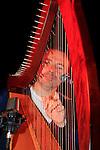 Harp Festival 2014