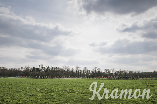 stretched peloton<br /> <br /> 105th Scheldeprijs 2017 (1.HC)<br /> 1 Day Race: Mol &rsaquo; Schoten (BEL/202km)
