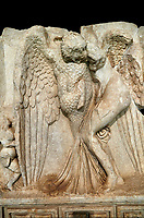 Close up of a Roman Sebasteion relief  sculpture of Leda and swan, Aphrodisias Museum, Aphrodisias, Turkey.   Against a black background.<br /> <br /> Zeus disguised as a swan assaults Spartan princess Leda. The bird stands on the tips of its outspread wings and presses its webbed foot on the thigh of modest, struggling Leda. The swan is supported from behind a small Eros. From this encounter came a large egg from which were born Helen and the Dionskouroi twins, Kastor and Polydeukes