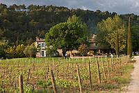 Europe/France/Provence-Alpes-Côte d'Azur/ Vaucluse/ Ménerbes:  La Bastide de Marie Hôtel restaurant et son vignoble