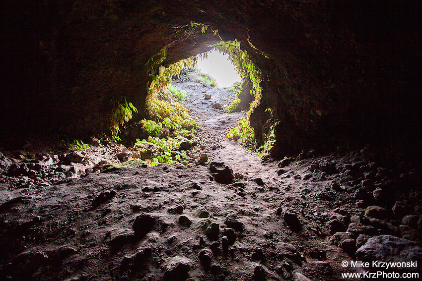 Looking out of Cave #3 along Old Mamalahoa Hwy., Big Island
