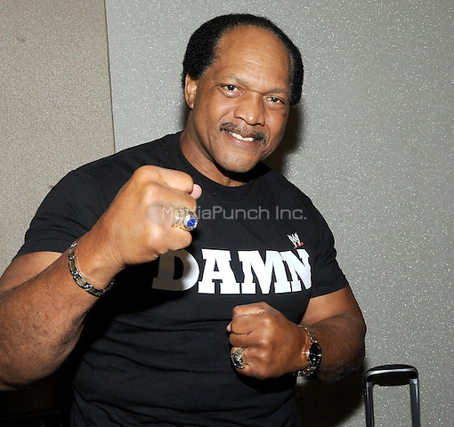 "NEW YORK, NY - MARCH 04: Hall of Fame member Ron Simmons attends the ""Big Event"" at the LaGuardia Plaza Hotel on March 4, 2017 in New York City.  Photo by: George Napolitano/ MediaPunch"