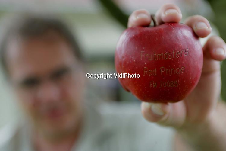 Foto: VidiPhoto..KLAASWAAL - Bij een proefopstelling in Klaaswaal wordt op dit moment in het geheim geëxperimenteerd met het graveren van Hollands fruit. De gepatenteerde techniek is uniek voor Europa en komt binnenkort op de markt. Met een laser wordt een code of logo in het fruit gebracht, zodat de herkomst altijd te achterhalen is. Graveren is goedkoper en sneller dan het plaatsen van een sticker en is bovendien onschadelijk voor de vrucht. Patenthouder van de vinding is Perfo Tec BV uit Mijdrecht.