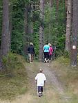 Miłomłyn 23.08.2013. Nordic walking w mazurskich lasach