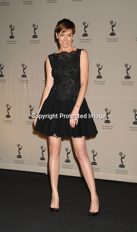 Julianne Nicholson ..at The 2006 International Emmy Awards Gala press room on   November 20, 2006 at The New York Hilton. ..Photo by Robin Platzer, Twin Images