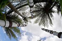 Susannah Bridges, Pohutukawa Light Poles, Shapeshifter 2014, Civic Gardens, Lower Hutt, Wellington, New Zealand on Sunday 2 March2014.<br /> Photo by Masanori Udagawa.<br /> www.photowellington.photoshelter.com.