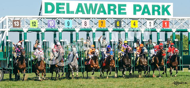 Mast Cove winning at Delaware Park on 9/12/16