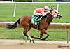 Christmas Barn winning at Delaware Park on 9/24/14